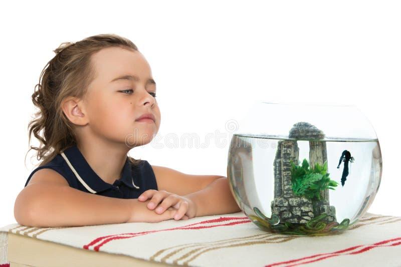 女孩敬佩鱼 免版税图库摄影