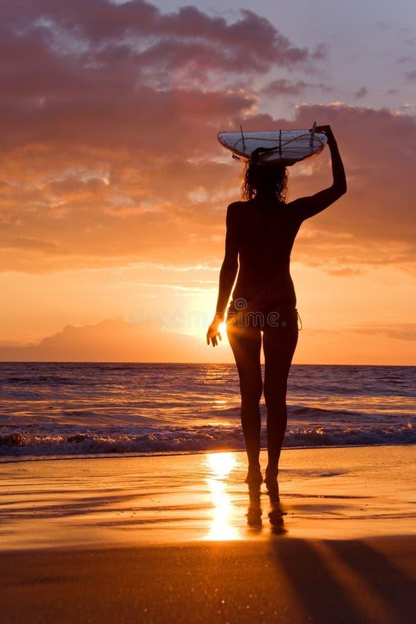 女孩日落冲浪者 库存图片