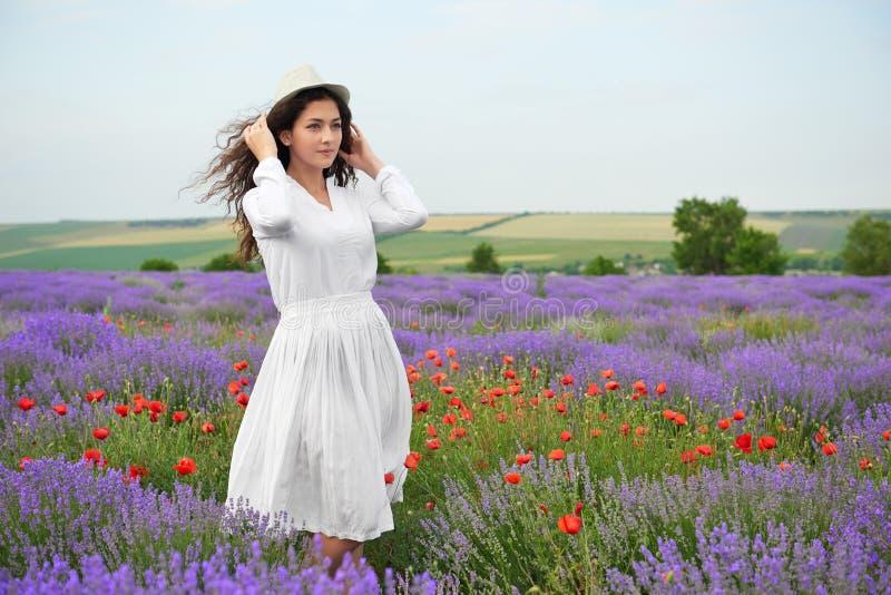女孩是在淡紫色领域,与花的美好的夏天风景 免版税库存照片