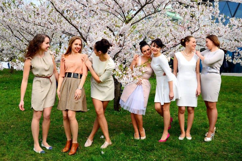 女孩有春天庆祝在维尔纽斯市 免版税库存图片