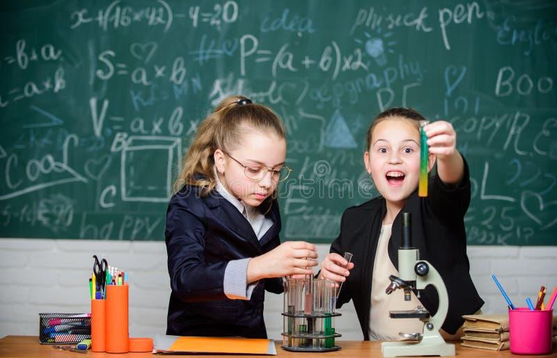 女孩校服繁忙与证明他们的假说 学校项目调查 学校实验 ?? 图库摄影