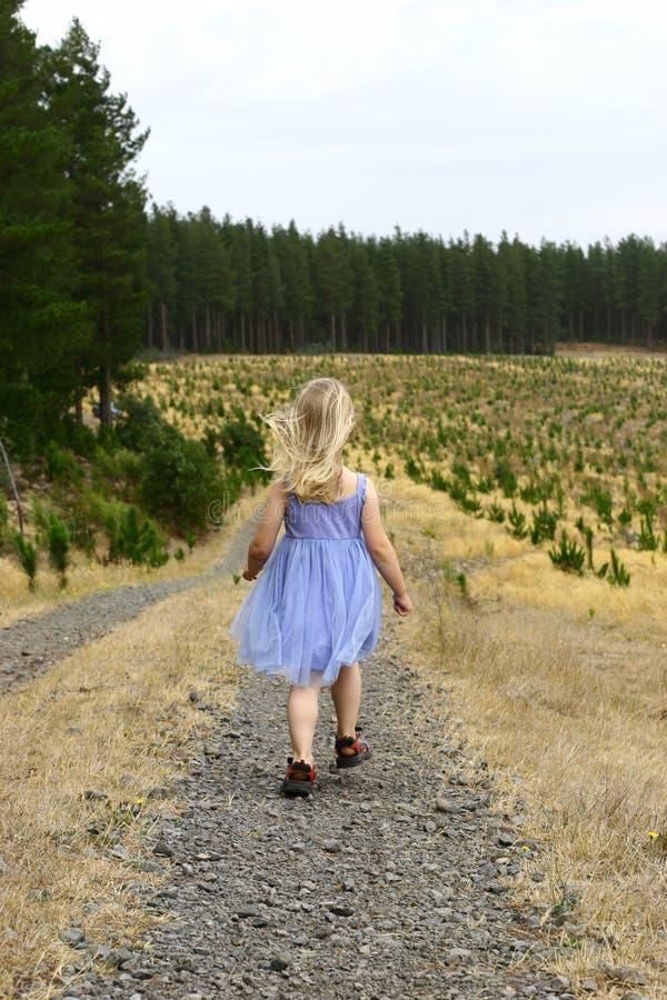 女孩森林 库存图片
