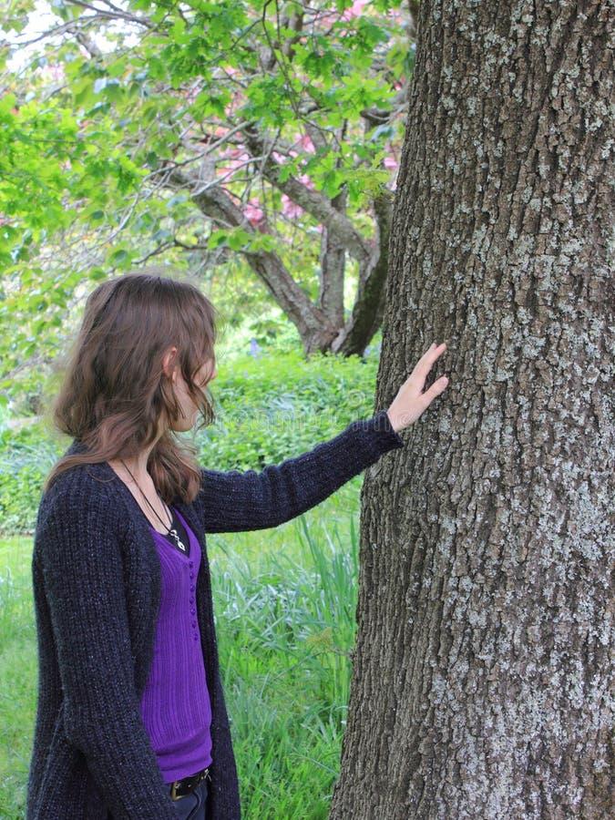 女孩橡木感人的结构树 免版税库存图片
