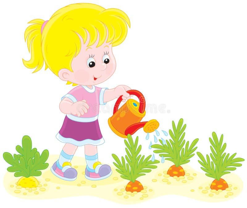 女孩浇灌的红萝卜 库存例证