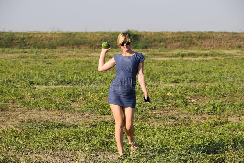 女孩用一个西瓜在她的手上 搜寻在瓜的领域的西瓜 发现了一个西瓜 免版税库存图片