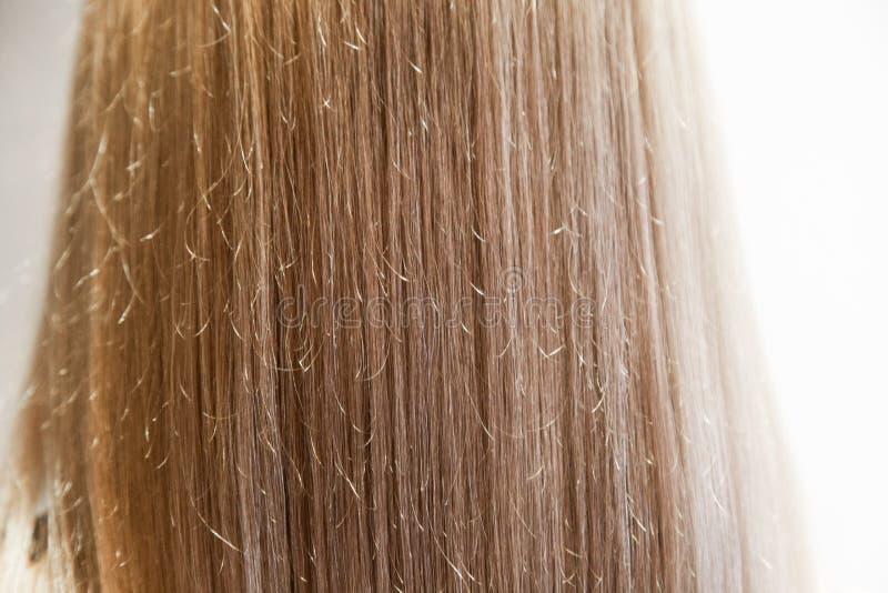 女孩的头发垂直从绘,长的平直的白肤金发的女性头发的关闭 库存图片