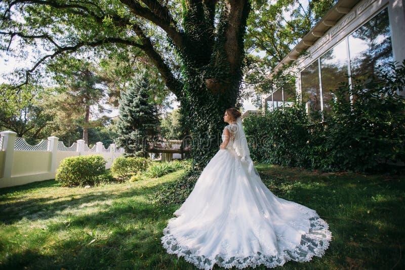 女孩的白色婚礼礼服火车的吊边在绿草美妙地说谎 新娘为a出去了 库存图片