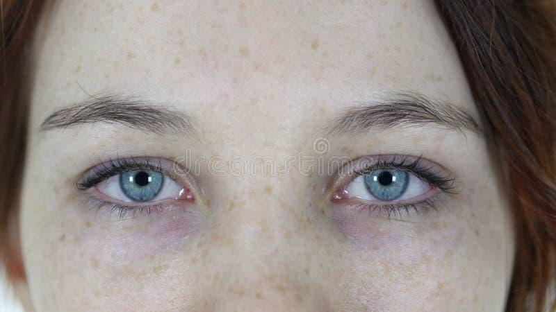 女孩的眨眼睛眼睛 免版税库存照片
