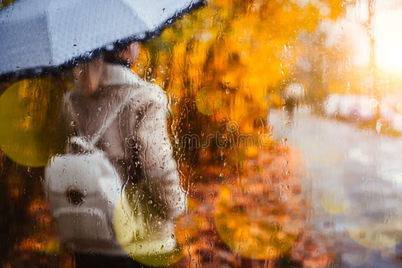 女孩穿戴有站立在窗口后的伞的飞行员夹克剪影盖用雨在金黄秋天滴下 免版税库存照片