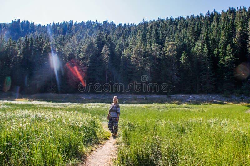 女孩背包徒步旅行者游人在绿叶、山和湖中站立 库存图片