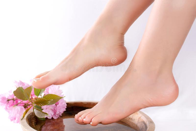 女孩腿和脚与法国修脚在秀丽和温泉演播室木碗的有水和装饰桃红色花的 库存图片