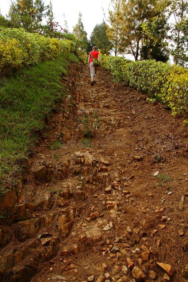 女孩走陡峭的岩石道路 库存图片