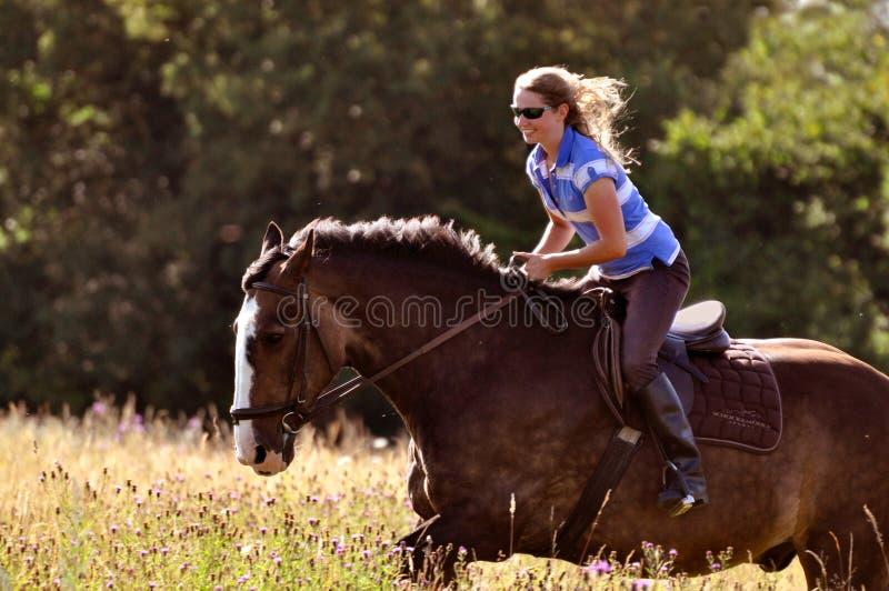 女孩骑乘马在草甸 免版税库存图片