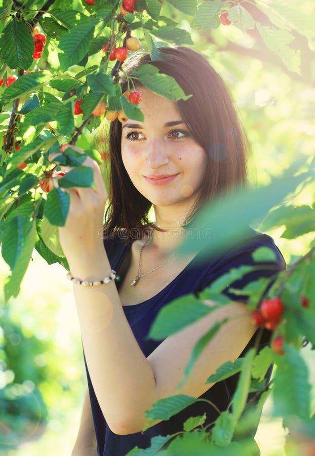 女孩从樱桃树的采摘樱桃 免版税库存图片