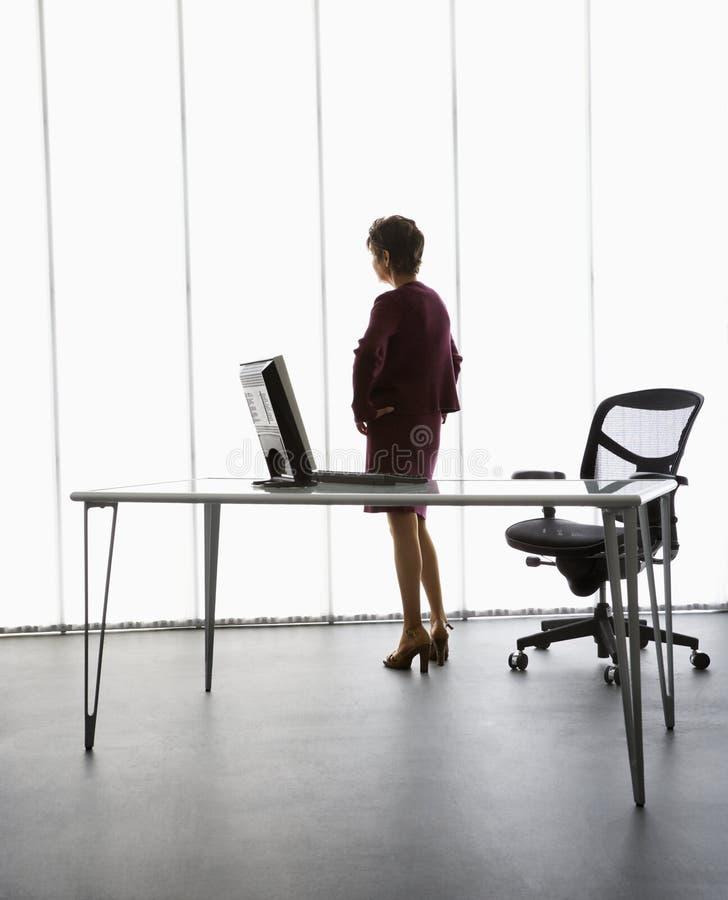 女实业家办公室 库存图片