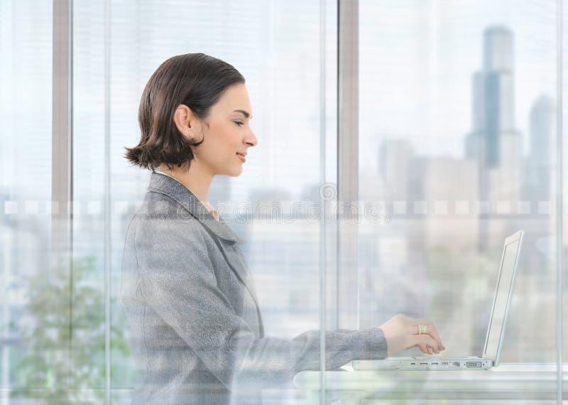 女实业家comouter膝上型计算机使用 免版税库存图片