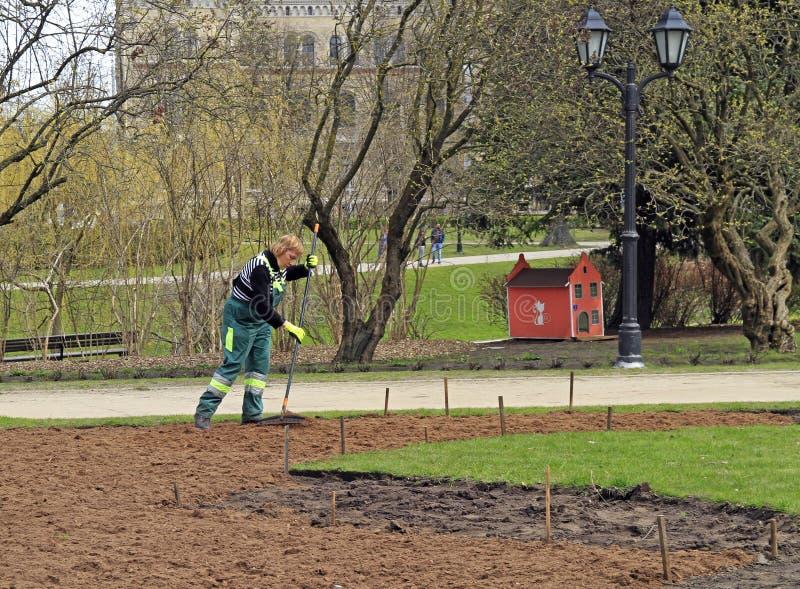女工准备土壤 图库摄影