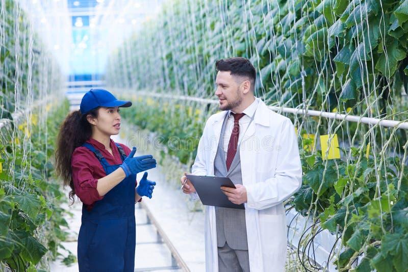 女工谈话与科学家在种植园 库存图片