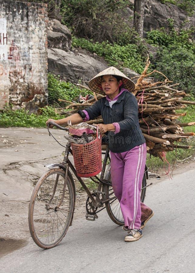 年轻女性农夫走用火木头装载的自行车 免版税库存照片