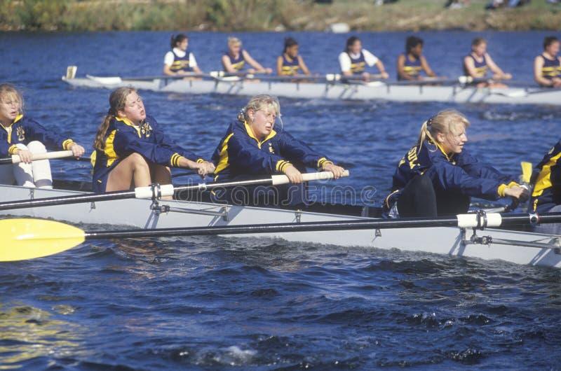 女性划船种族 库存图片