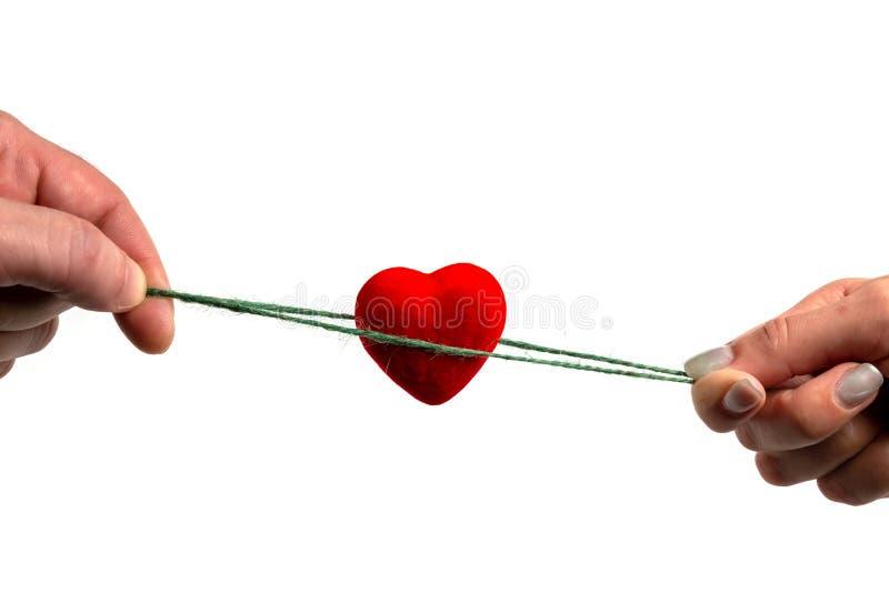女性和男性手保留与绿色绳索的红心在白色背景/桌 国际人的团结天 免版税库存图片