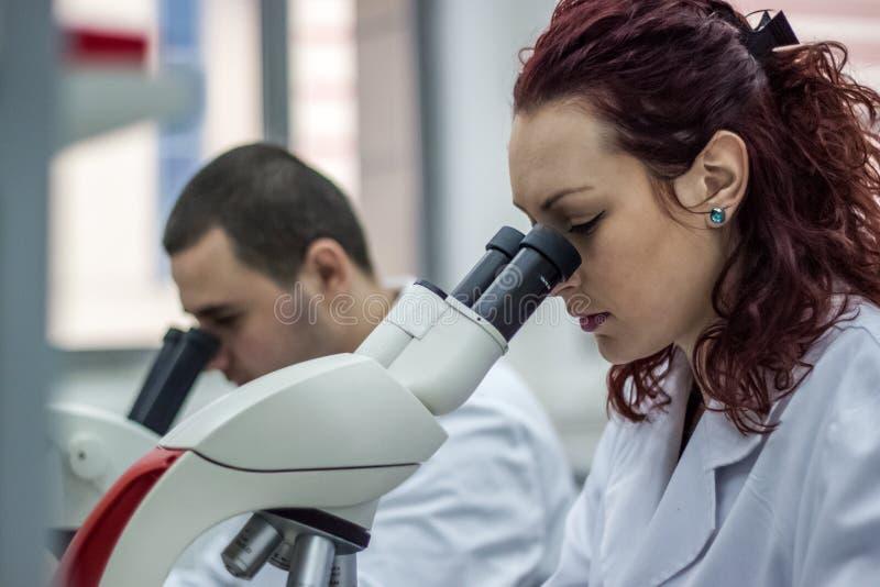 女性和男性医疗或科学研究员或妇女和m 库存图片