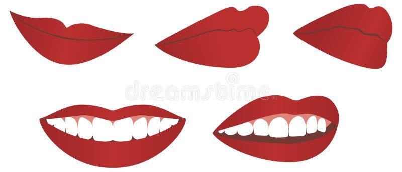 女性嘴唇 库存例证