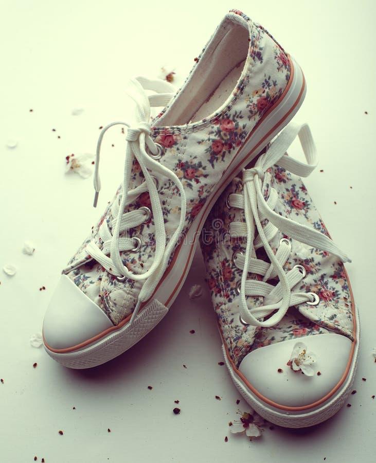 女性夏天运动鞋 库存照片
