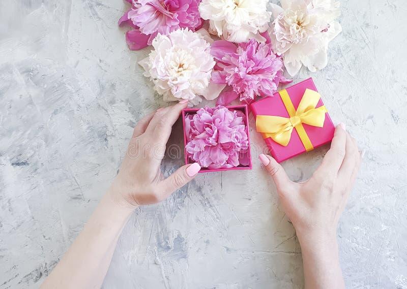 女性手提出拿着在灰色具体背景的一个牡丹花礼物盒 免版税库存照片
