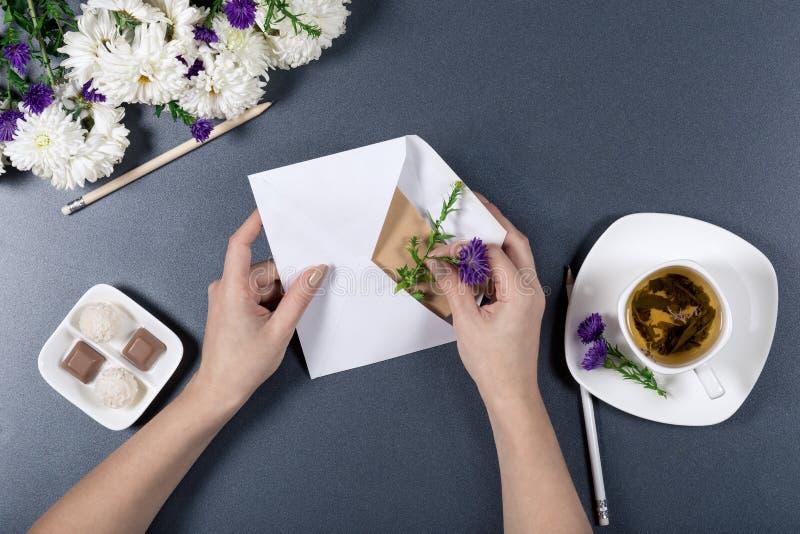 女性手放花入与信件的白色信封 新鲜的菊花、铅笔、在灰色backgroun的茶和糖果 库存图片