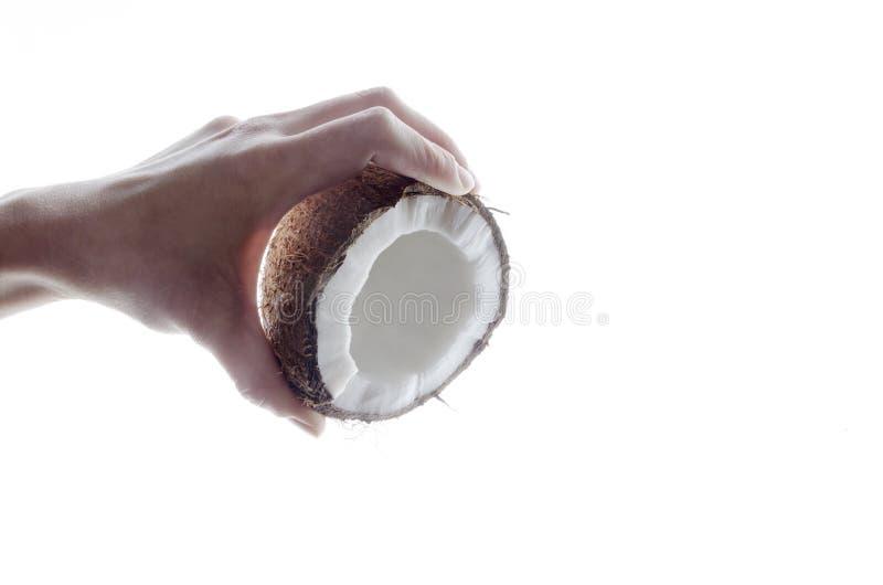 女性手,鲜美新鲜的椰子,白色backgrond特写镜头  图库摄影