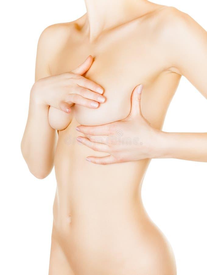 女性控制乳房 库存照片