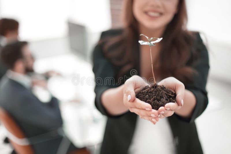 女性环境保护者陈列新鲜的新芽 免版税库存照片
