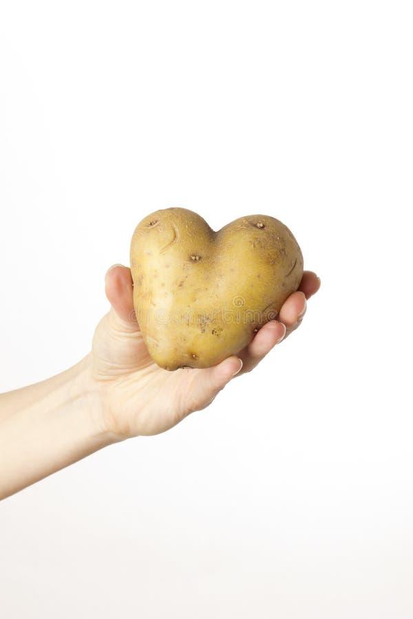 女性现有量重点藏品potatoe 库存图片