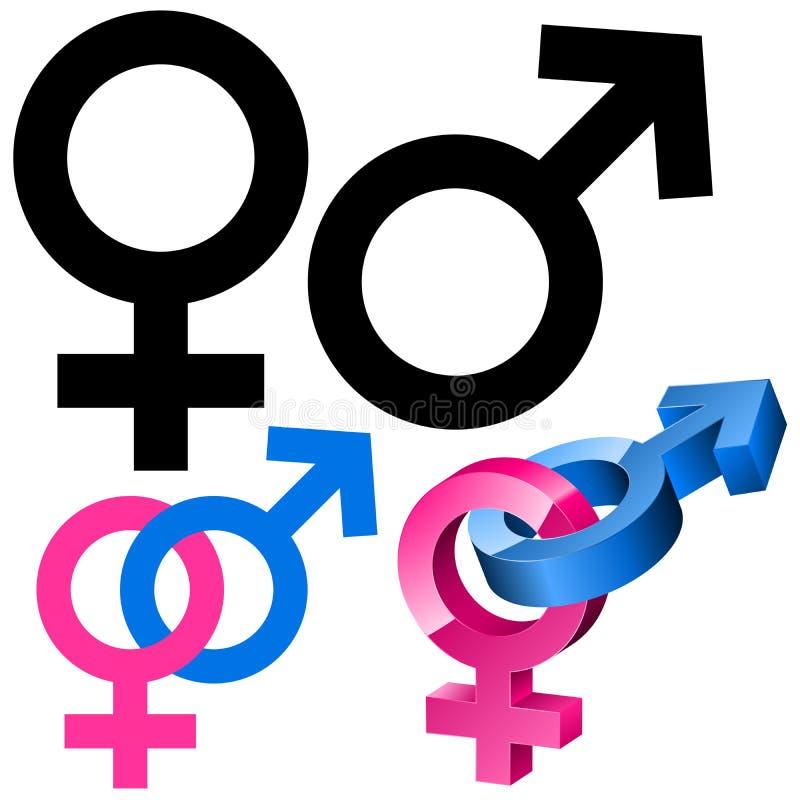 女性男性符号 皇族释放例证