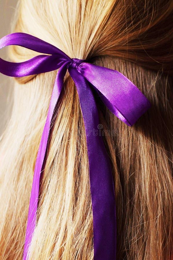 年轻女性的背面图有秀丽平直的长的头发的 库存图片