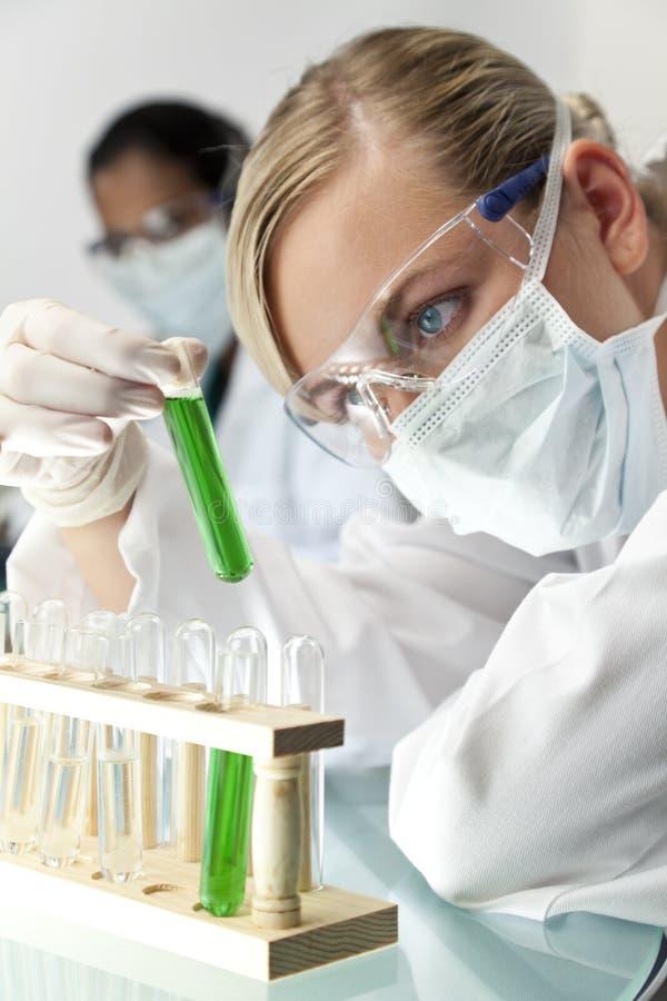 女性研究科学小组 免版税库存图片
