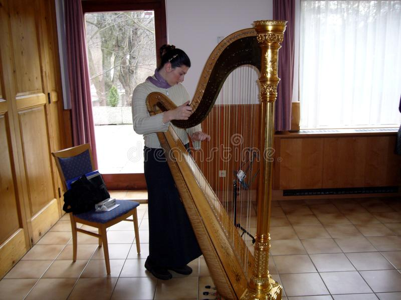 女性竖琴音乐家使用 笔记,音乐 库存照片