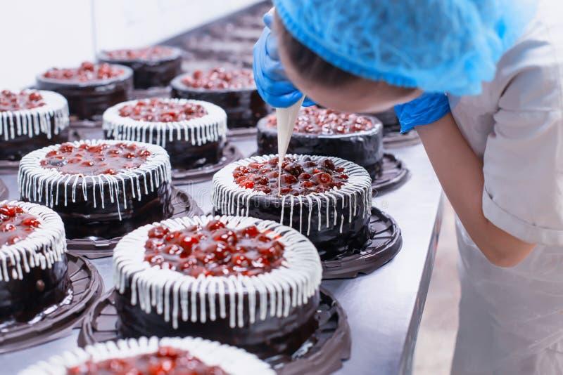 女性糖果商装饰海绵与新鲜的樱桃莓果奶油的巧克力蛋糕 做糖果店,事务的蛋糕 库存图片