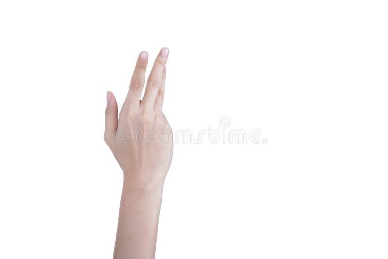女性美丽的天分手、胳膊和手指在良好状态figu 免版税库存照片