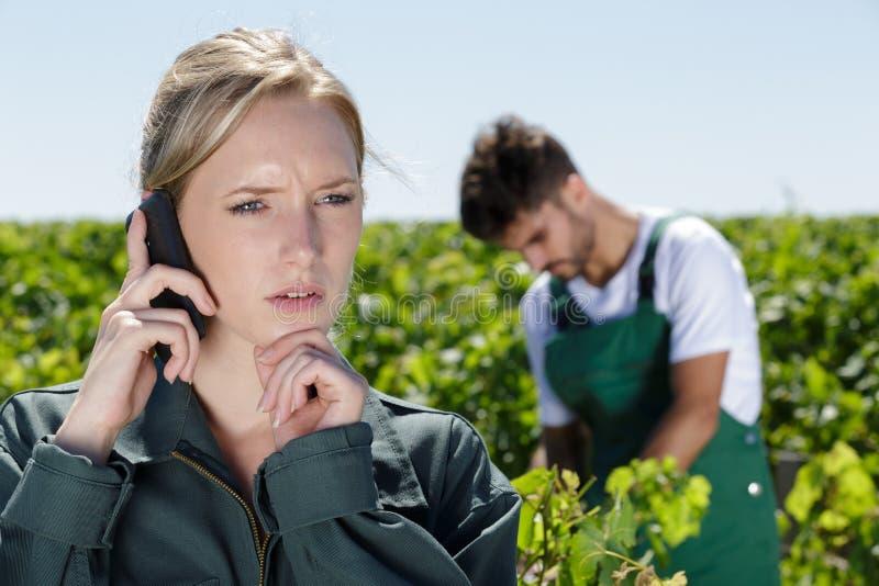 女性葡萄园监督员谈话与手机 免版税库存照片