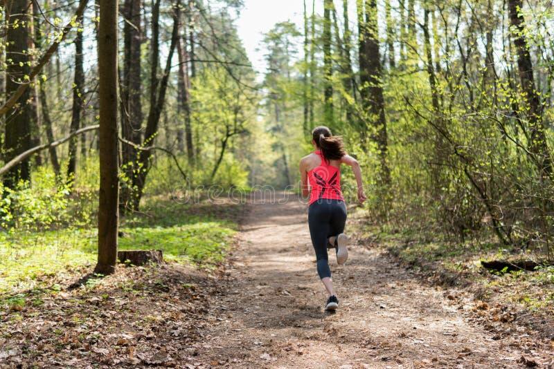 女性赛跑者奔跑在春天晴朗的森林里 库存照片