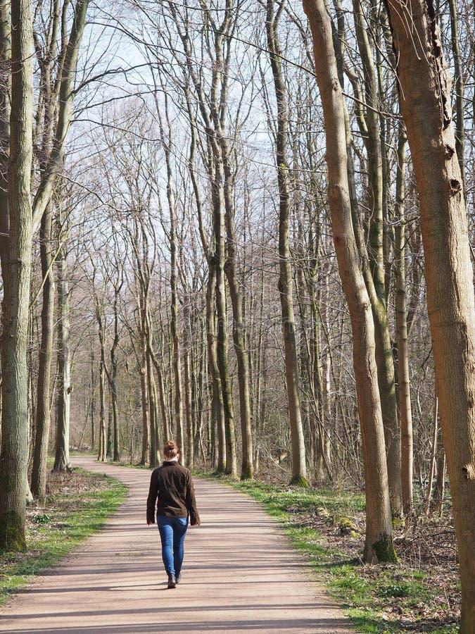 女性走在一条轨道在森林里在蓝天下 库存照片