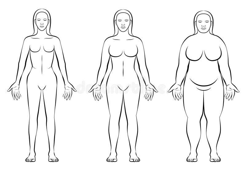 女性身体宪法键入稀薄的肥胖正常重量 库存例证