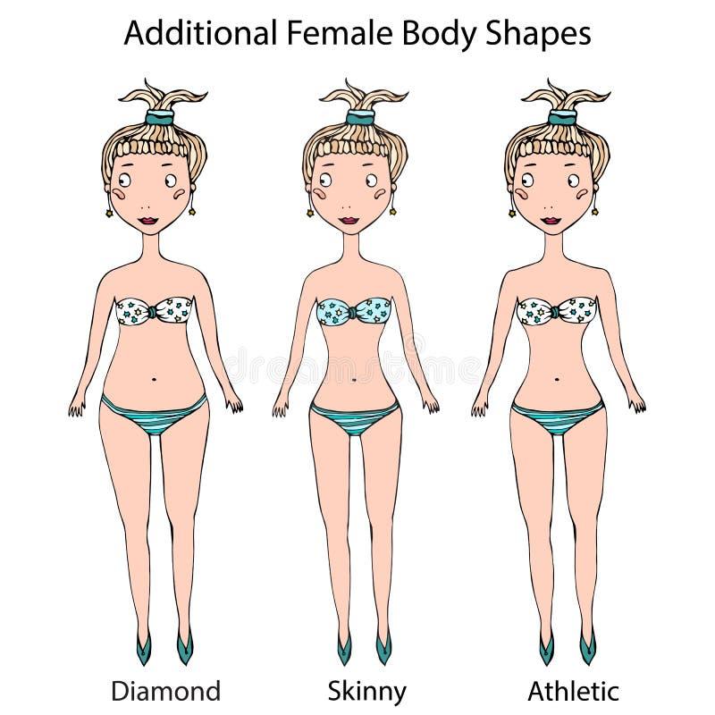 女性身体形状类型 金刚石,皮包骨头,运动女孩 现实手拉的乱画样式剪影 也corel凹道例证向量 皇族释放例证