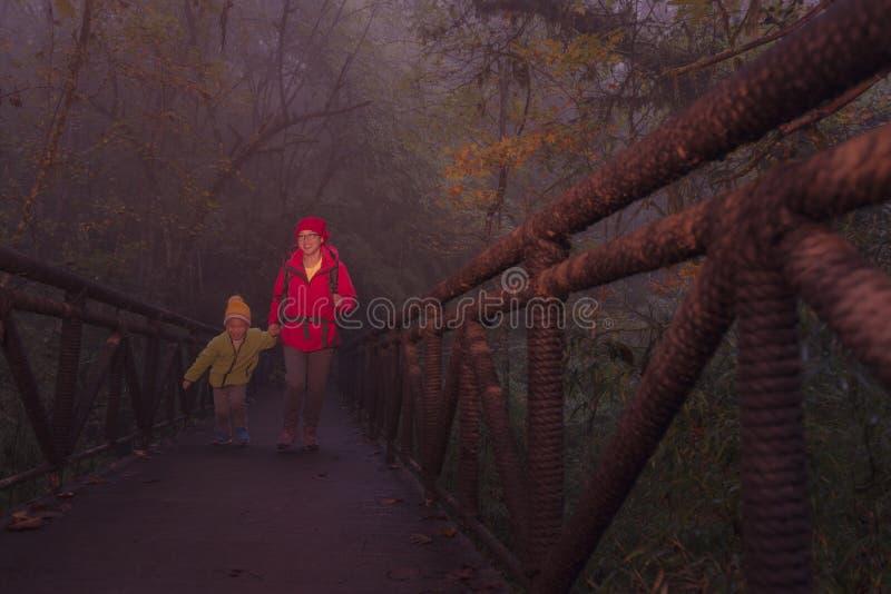 年轻女性远足者和儿子过桥在有薄雾的森林里 免版税图库摄影
