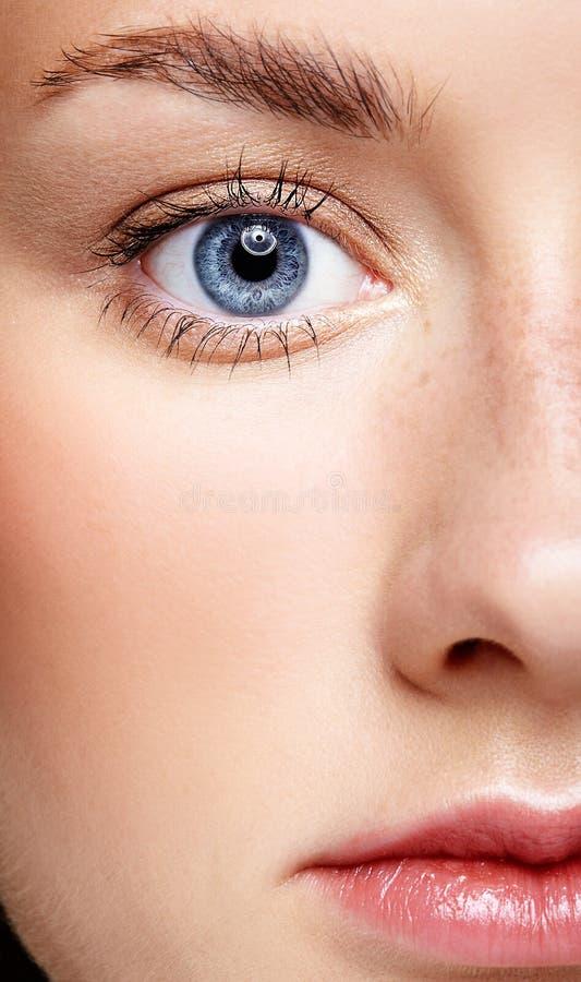 女性面孔和蓝眼睛特写镜头宏观画象  人的妇女 免版税库存照片