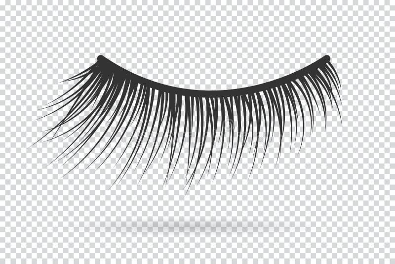 女性鞭子传染媒介 错误的睫毛 向量例证