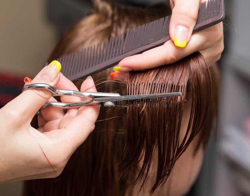 女性头发切口在美容院剪 库存照片