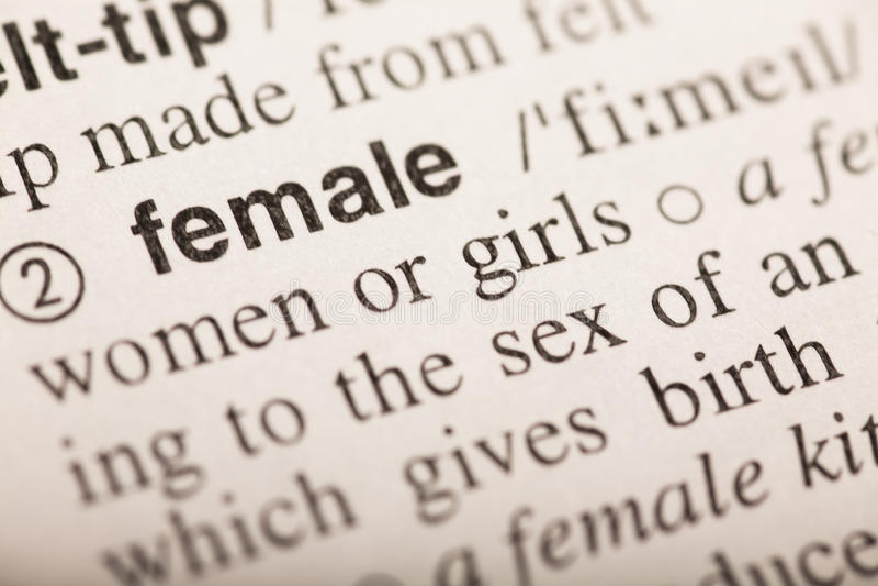 女性-在字典的词 免版税库存图片